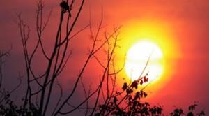 Karachi-summer-heat_6-20-2015_188661_l