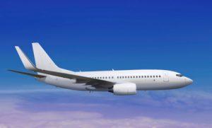 विमान से टकराया पक्षी, यात्री सुरक्षित