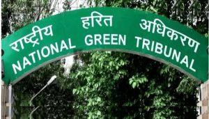 राष्ट्रीय हरित अधिकरण ने विझिंजम बंदरगाह की पर्यावरण मंजूरी रद्द करने से मना किया
